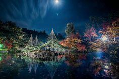 今年一番の美しい庭園ライトアップでした  人もいないし、照明もイマイチだったので、自分で調整しちゃいました    location:Niigata  。  。  。  #icu_japan#loves_longexposure#igscglobal#loves_united_asia#新潟#Instagramjapan#ig_japan#wu_japan#igs_asia#loves_nippon#team_jp_#ig_catalonia#prestige_pics_#team_jp_東#loves_United_Team#IGersJP#東京カメラ部#worldprime#jp_gallery#jp_gallery_member#loves_united_members#キタムラ写真投稿#PHOS_JAPAN#loves_united_places#1x#theIMAGED  #loves_team_members#tv_depthoffield#airy_pics
