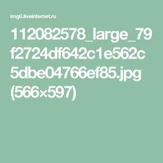 112082578_large_79f2724df642c1e562c5dbe04766ef85.jpg (566×597)