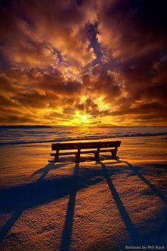 Beautiful Sunset and Sunrise All Nature, Amazing Nature, Nature Tree, Beautiful Landscapes, Beautiful Images, Beautiful Moments, Landscape Photography, Nature Photography, Photography Tips