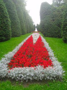 Planty Park in Białystok, near Adam Mickiewicz street. #Białystok #Podlasie #Poland #flowers #park