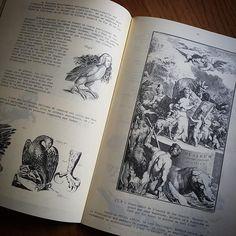 Découvrez CURIOLOGIE, mon instagram Cabinet de Curiosités  https://www.instagram.com/curiologie/ #darkart #dark #curiologie #perelachaise #cabinetdecuriosite #oddities #alchemy #altar #antique #vintage #ritual #darkness #religiousart #tombe #cimetiere #cimetery #igersparis #paris #macabre #ig_europe #igs_europe #ig_clubaward #fantastic_capture #Super_France #special_shots #ig_mood #gothique #goth #gothic