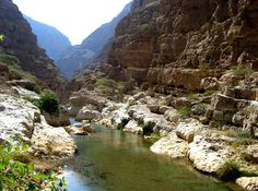 Oman overnight safari trip to explore the best of Oman desert and coastal attractions, group excursions to visit Wadi Shab, Wahiba Sands, The white beaches of Finns and watch the giant Turtles at Ras Al Jinz beach. 2 Days adventure group tours from Muscat.
