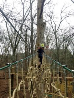 Go Ape treetop adventure course at Shelby Farms is now open!