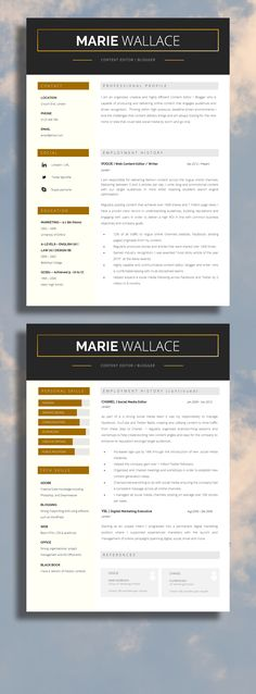 Great Layout Professional Resume Template 2 Page Resume Template