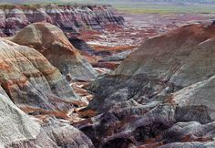 To really enjoy the Petrified Forest National Park, you need to drive through it at a leisurely pace, taking advantage of the scenic pull-outs for viewing various features of the landscape. Description from abqstyle.com. I searched for this on bing.com/images