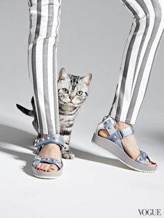That's Tommy—and a rubber-soled studded sandal that will have nine lives in your closet.Balenciaga nylon, rubber and leather classic Arena Strap sandals, $705Louis Boston, Boston, 617.262.6100Tommy, All Creatures Great & Smallanimalagent.comPictured with: Genetic Denim jeans