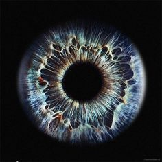 "photo of human iris ""*"" by cheshireman"