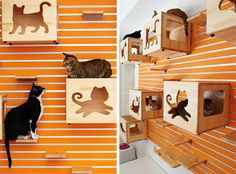 The folks at Catswall Design were very grateful for your comments when I first posted their magnificent modular cat climbing wall and they took many of your suggestions to heart, integrating them into the latest design. They just released the new system and it has some excellent features. The new catboxes have a door in front that is…