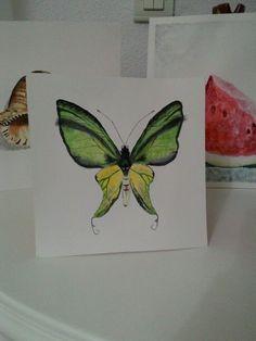 watercolor butterfly Butterfly Watercolor, Painting, Art, Painting Art, Paintings, Kunst, Paint, Draw, Art Education