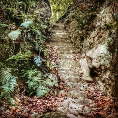 #ancient #stairs