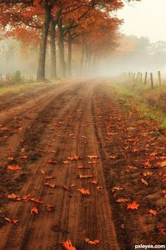 Google Image Result for http://www.pxleyes.com/images/contests/autumn-2/fullsize/Fall-On-A-Country-Road-4ebd3b099d103.jpg