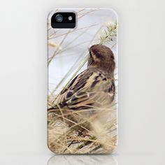 Be as a Bird iPhone & iPod Case by Laura George - $35.00