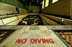 A forgotten swimming pool littered with fallen ceiling tiles.