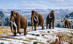 This Theory of Why Mammoths Went Extinct Will Make You See the Earth in a Different Way