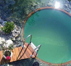 swimming_pond_pool_2009.jpg