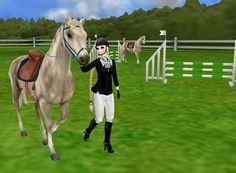 lindo cavalo