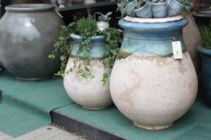 Poterie Le Chene Vert - I found this at the Chelsea Flower Show