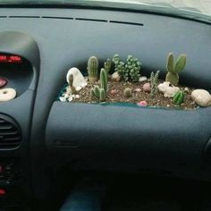 Wear your leather driving gloves for this one. Check out more funny pictures at RealFunny.net