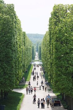 ✪ Parc de Versailles, France I cant wait to take Emma here.... hopefully this coming summer!