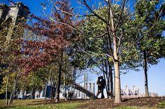 Love this !! #weddingphotographer #weddingphotography #williammasonphotography  #newyork #nyc #love #instalove #instagood  #bride #groom#love #photooftheday  #bride #groom #photography #statenisland #newjersey #nj #la #california #miami #engaged #shesaidyes #newyorkweddingphotographer#brooklyn#weddingphotographer #statenislandweddingphotographer #njweddingphotographer#bayridge #bayridgebrooklyn#brooklyn #nywedding #nyweddingphotographer