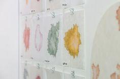 Mieke van den Hout - Studio Mieke Lucia - Colour research