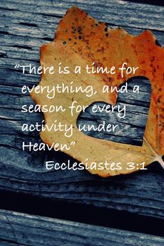 """""""There is a time for everything, and a season for every activity under Heaven."""" Ecclesiastes 3:1."""