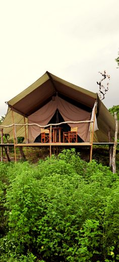 Take camping to a whole new level in #Ecuador at the Galapagos Safari Camp.
