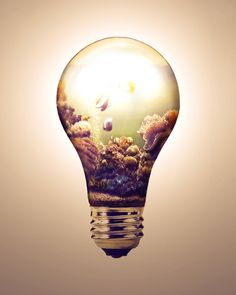 69 Best Light Bulb Drawing Images Light Bulb Drawing Lightbulbs