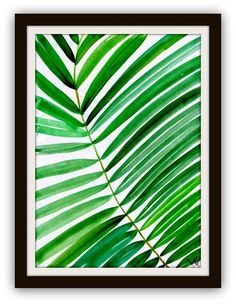 Tropical leaf watercolor painting coconut palm by Sweepinggirl