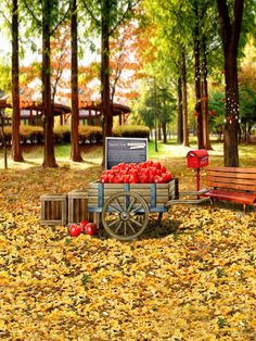 Find More Background Information about LIFE MAGIC BOX Vinyl Backdrops For Photography Background Vinilos Infantiles Autumn Harvest CMS 1780,High Quality vinyl backdrops for photography,China vinyl backdrop Suppliers, Cheap backdrops for photography from A-Heaven Fashion Gifts on Aliexpress.com