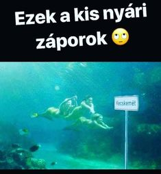 Amikor egyeseknél a már túlzás😂 Some Jokes, Me Too Meme, Funny Me, Funny Fails, Really Funny, Make You Smile, Funny Photos, Puns, Haha