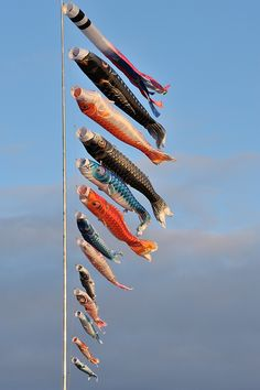 The Carp Streamers for Children's Day in Japan