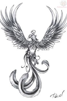 Phoenix, a symbol of energy and rebirth