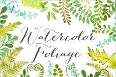 Watercolor Foliage ~ Illustrations on Creative Market