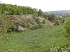 Troja - our year-round playground - so amazing to explore the whole hilly area.