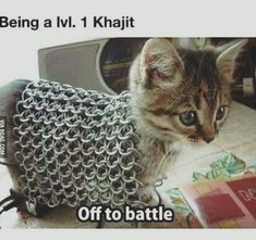 Khajit life