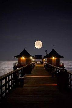 Moonrise in Naples, Florida Naples Florida, Naples Pier, Florida Usa, Beautiful Moon, Beautiful World, Wonderful Places, Beautiful Places, Beautiful Pictures, Beautiful Scenery