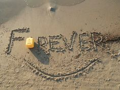Why Forever? Simply because it can give ordinary people the opportunity to live extraordinary lives! Love Me Forever, Forever Yours, Forever Living Products, Aloe Vera Gel, Home Based Business, Opportunity, Live, Health, Ireland