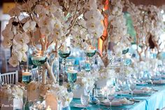 Tiffany blue and white tabletop ~ manzanita dripping with white orchids