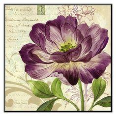 Art.com - Study in Purple II Mounted Print