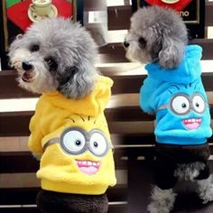 Fleece Warm Pet Dog Clothes Winter Pet Coat Jacket Minions Pet Costume Puppy Hoodies Teddy Clothing Cat Hoodie Pet Apparel 40 // FREE Shipping //     Get it here ---> https://thepetscastle.com/fleece-warm-pet-dog-clothes-winter-pet-coat-jacket-minions-pet-costume-puppy-hoodies-teddy-clothing-cat-hoodie-pet-apparel-40/    #nature #adorable #dogs #puppy #dogoftheday #ilovemydog #love #kitty #kitten #doglover #catlover