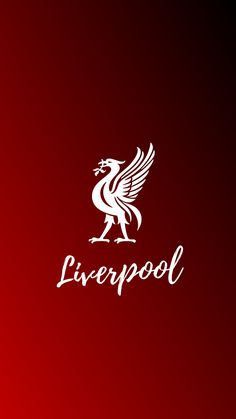 Sports – Mira A Eisenhower Liverpool Fc Wallpaper, Liverpool Wallpapers, Liverpool Players, Liverpool Football Club, Good Morning Picture, Morning Pictures, Manchester United Team, Phone Wallpaper Images, Red Day