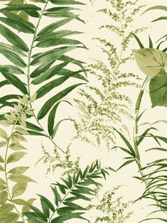 Palms Wallpaper York Wallcoverings Greens Whites Botanical Wallpaper Designer Wallpaper Sure Strip Tropical Wallpaper, Easy to clean , Easy to wash, Easy to strip