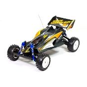 Browse our huge selection of Radio Control RC Toys and Products . We carry both nitro and electric RC airplanes, boats, buggies, cars, helicopters, tanks and trucks.