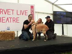 Fievel having a moment with Noel and his loving family, receiving his medal — at Arley Hall.