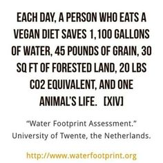 This is amazing! You have the power to save these things each and every day by eating in a vegan, plant-based way. Vegan Quotes, Food Quotes, Best Vegan Recipes, Whole Food Recipes, Plant Based Diet, Plant Based Recipes, Vegan Lunches, Vegan Snacks, Vegan Dinners