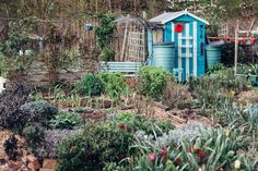 Make do and mend garden style