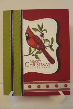 Cardinal Merry Christmas by 2fogles - Cards and Paper Crafts at Splitcoaststampers