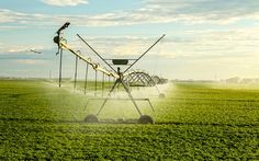 Choose The Best Irrigation Tools From The Dealers Visit : http://findcompany.in/city/new-delhi/agriculture