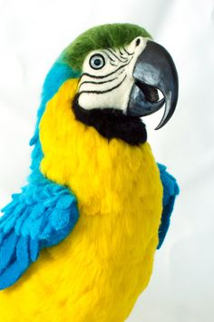 Hugo the Blue and Gold Macaw: Needle felted animal sculpture by Megan Nedds of The Woolen Wagon
